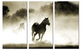 Schilderij Paarden