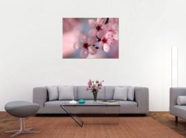 Roze bloesem schilderij