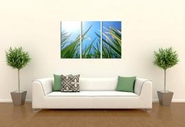 Schilderij Gras
