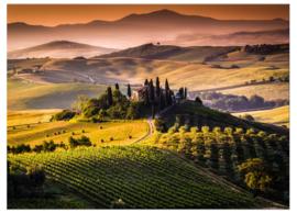 Toscane foto schilderij