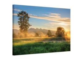 Foto schilderij misty field