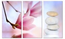 Zen Magnolia Bloemen
