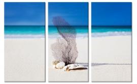 Schilderij Wit Strand
