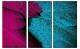 Kleurrijke Veren Schilderij