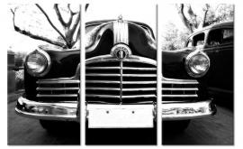 Pontiac Zwart Wit