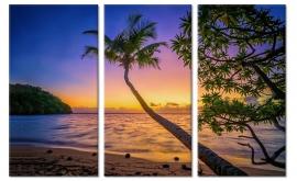 Schilderij Tropische Zonsondergang