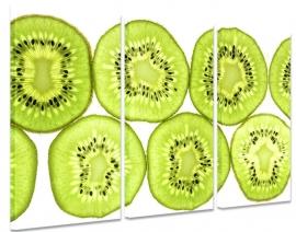 Kiwi Schilderij