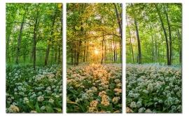 Schilderij Bloemen in het Bos