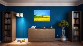 Geel Bloemenveld Schilderij