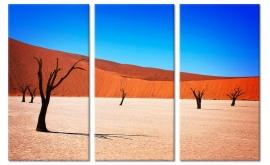 Schilderij Sossusvlei Namibie