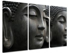 Buddha`s Gaze