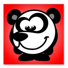 Zoo Baby Panda