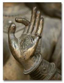 Buddha`s Gesture