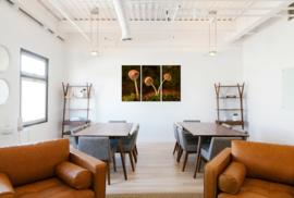 Paddenstoelen: canvas schilderij