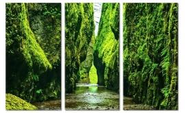 Canvas Schilderij Groen Ravijn