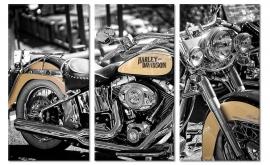 Schilderij Harley Davidson Motor