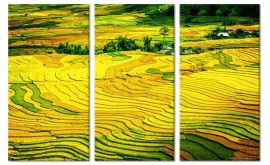 Canvas Schilderij Vietnam