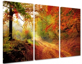 Canvasdoek Herfst