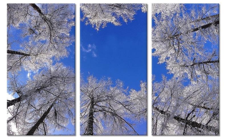 Winter Bomen Schilderij