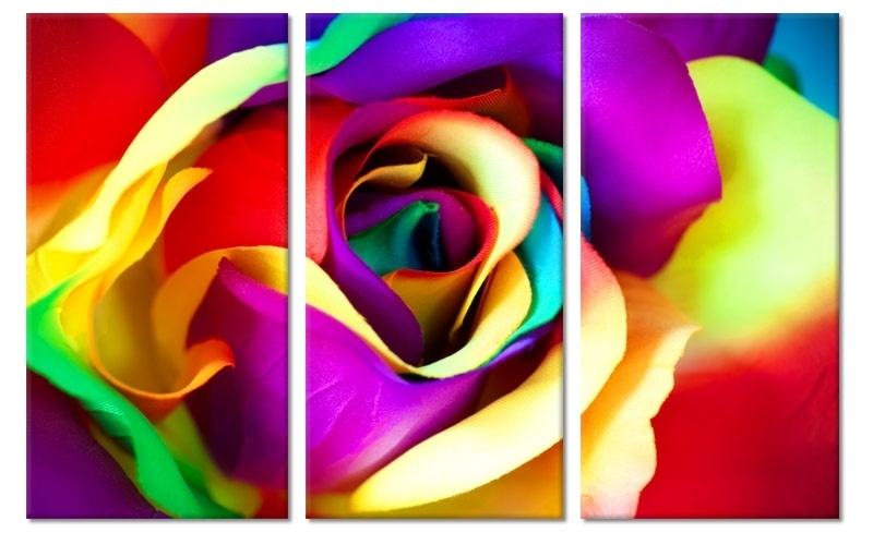 Schilderij Kleurrijke Roos