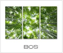 canvas schilderijen bos