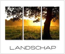 landschap schilderijen webshop