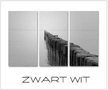 zwart wit foto schilderijen kopen
