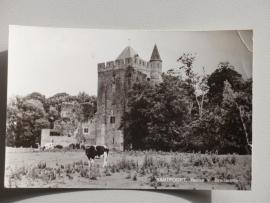 Santpoort, Ruine van Brederode