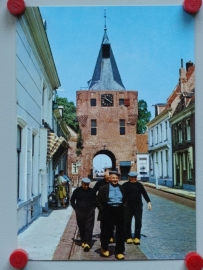 Elburg, De Vispoort