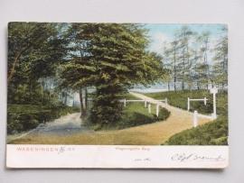 Wageningen, Wageningsche Berg  (1903)