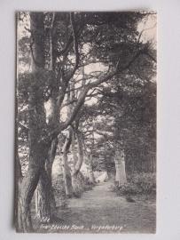 Ede, Vergaderberg (1908)
