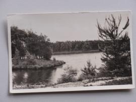 Oisterwijk, Staalbergven  (1954)