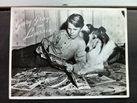 Garry Gray en Lassie