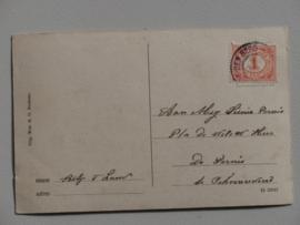 Nederhorst den Berg, Kasteel Nederhorst  (1916 ?)