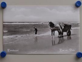Zandvoort, Zee en Duin