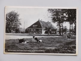 """Bakkeveen, Kampeerboerderij """"de Johanna State"""""""