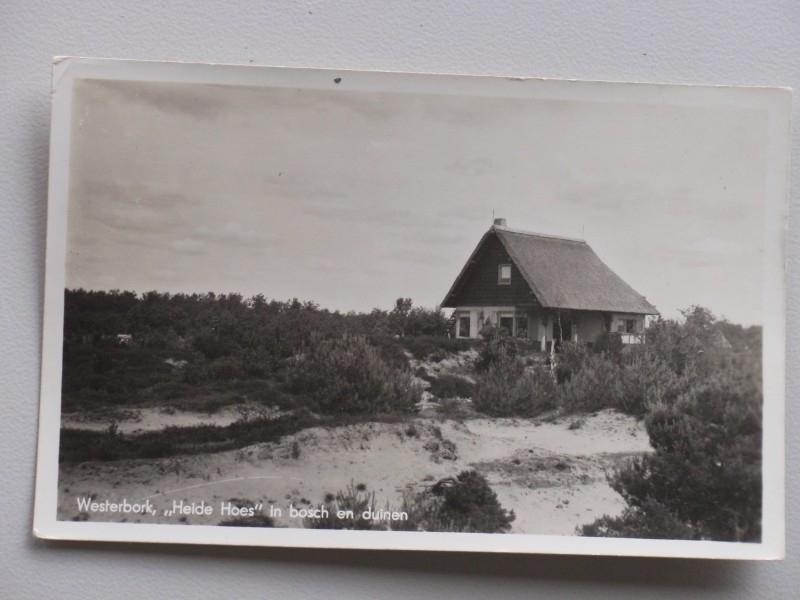 Westerbork, ` Heide Hoes` in bosch en duin