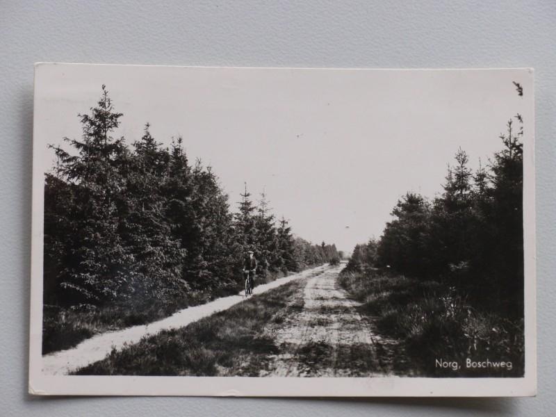 Norg, Boschweg (1955)