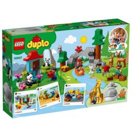Duplo Lego 10907 - Dieren van de Wereld