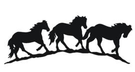 sticker horses rij paarden