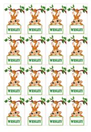 Velletje bedrukte stickers aapje met naam