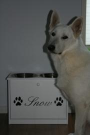 Sticker hondenaam met hondepootjes
