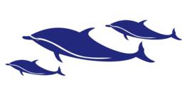 Set dolfijnen
