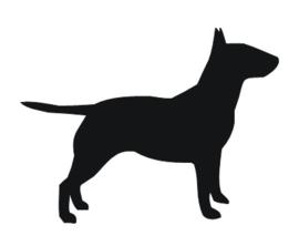 Sticker Bull Terrier staand