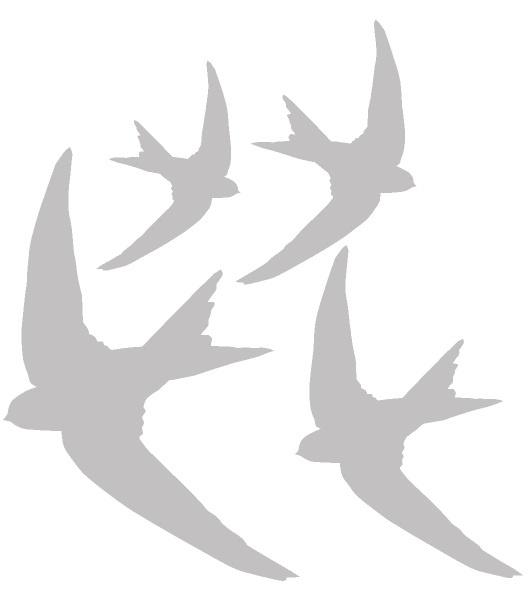Zandstraal Glasfolie vogels set van 4