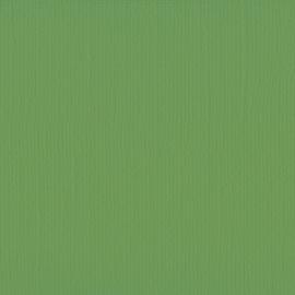 Cardstock - groen, lichtmos