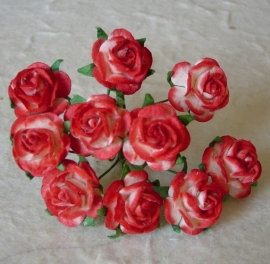 Paper roses, 15 mm. red/white