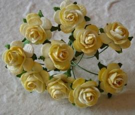 Paper roses, 15 mm. geel 2-tone