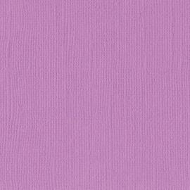 Cardstock - paars, hydrangea