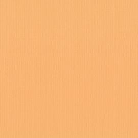 Cardstock - oranje, bij